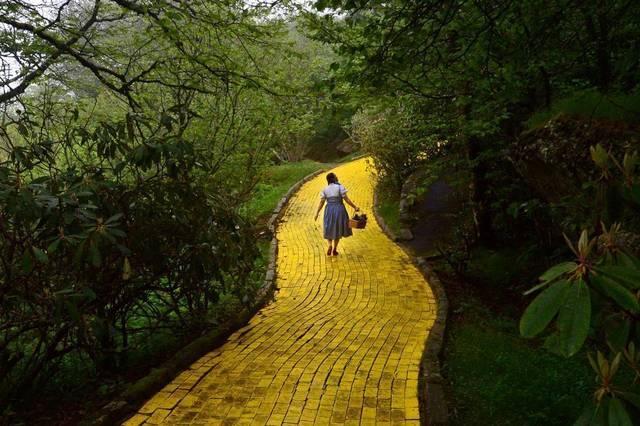 Wizard of Oz I